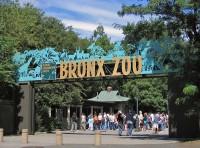 Bronx Zoo - April 10, 2021
